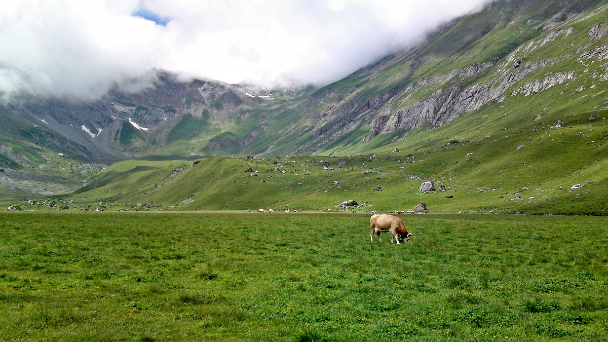 Klettersteig Chäligang : Bergfex allmenalp klett klettersteig tour berner oberland
